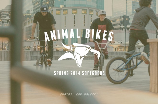 Animal_SpringLookbook_Banner