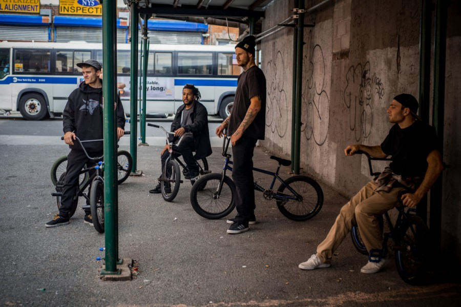 animal_house__BMX_street_-colin-abdul-hoder-rat-squad